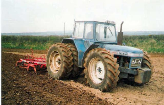 1965 l.png