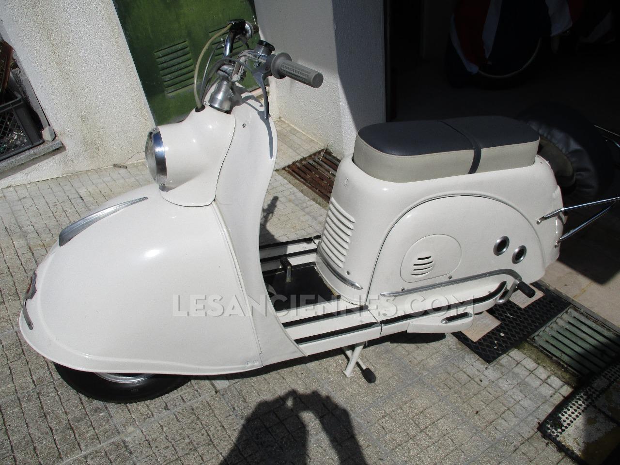 GOGO 1955