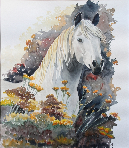 IMG_0452.jpg le cheval blanc aux immortellesn°2.jpg