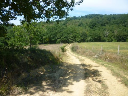 Chemin entre Miramont-Sensacq et Sensacq