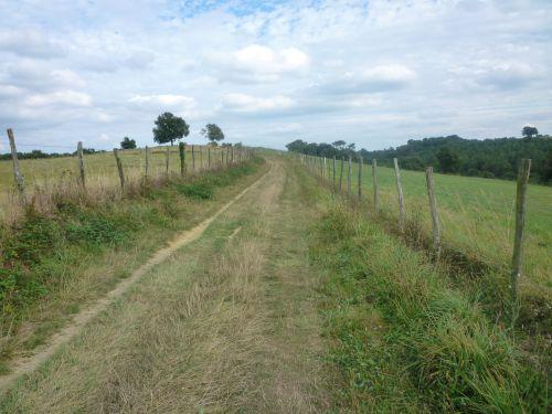 Pas l'Aubrac, mais le chemin près de Fichous-Riumayou