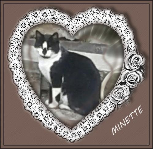 Minette pour Domi 02 2014 (1).png