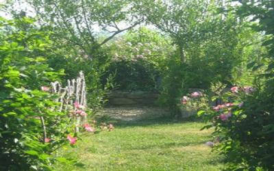 Jardin Médiéval de Padiès