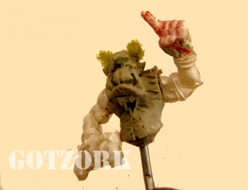 Brico-Buggy-Gotzork-(12).jpg