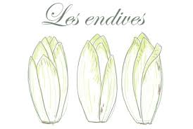 potage d'endives.png
