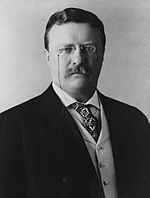 Théodore roosevelt (président us)