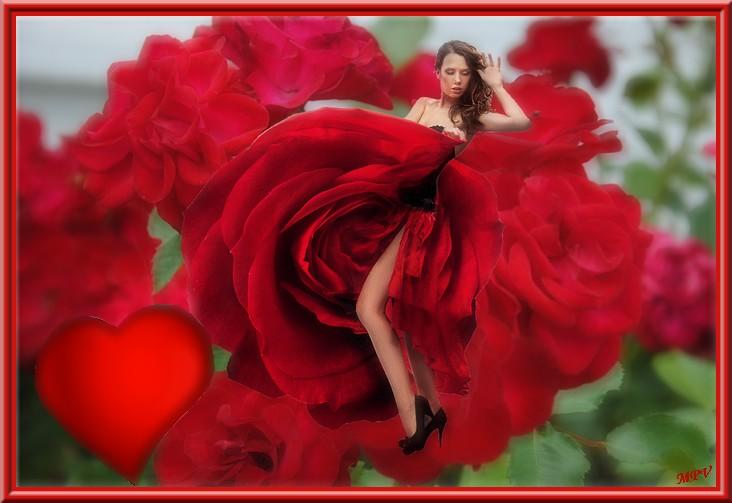femme dans les roses.jpg