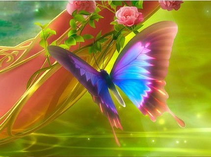 papillon et fleur.jpg