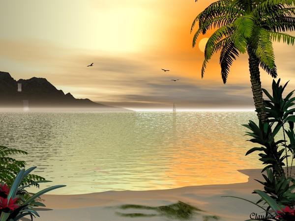 plage tropicale 2.jpg