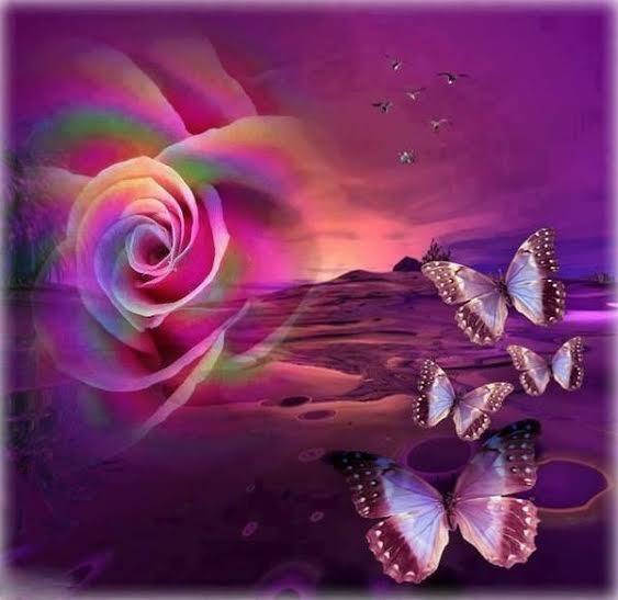 rose et papillons.jpg