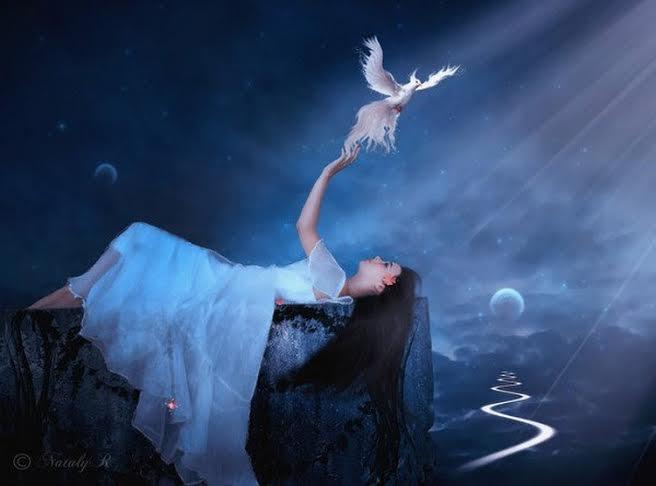 femme et oiseau lyre.jpg