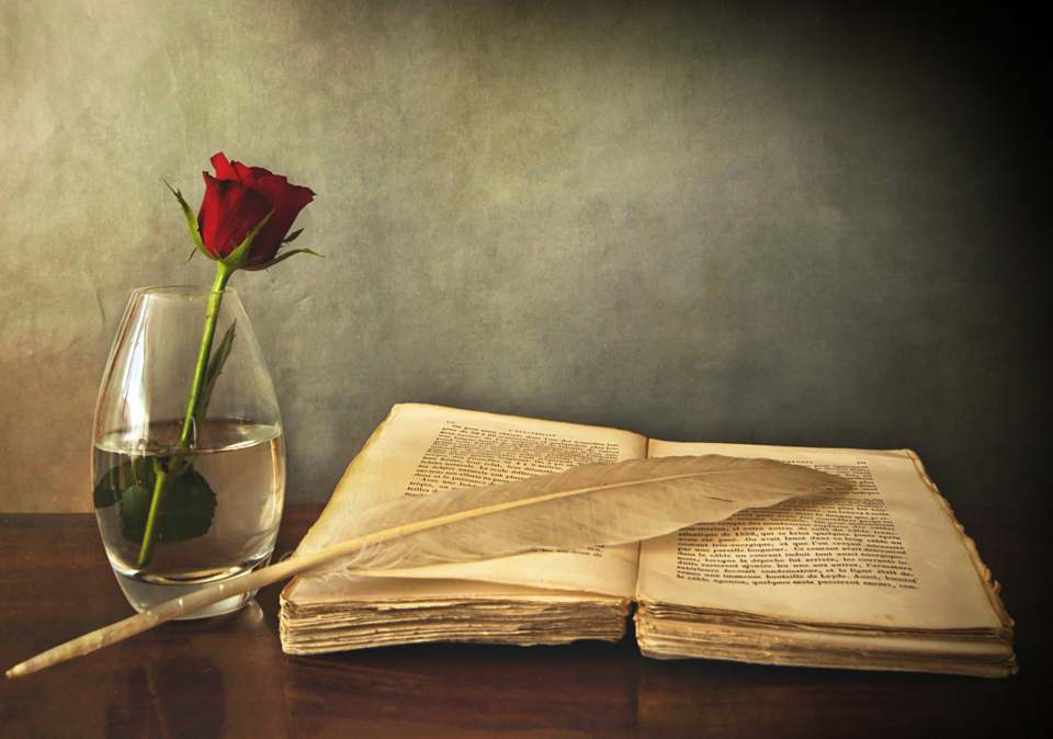 livre plume et rose.jpg