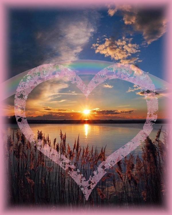 Coeur arc-en-ciel.jpg