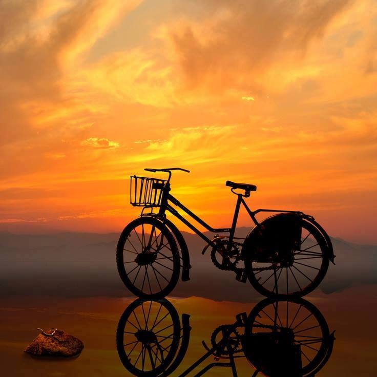 vélo au clair de lune.jpg