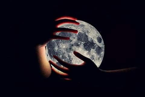 Mains qui tiennent la terre.jpg