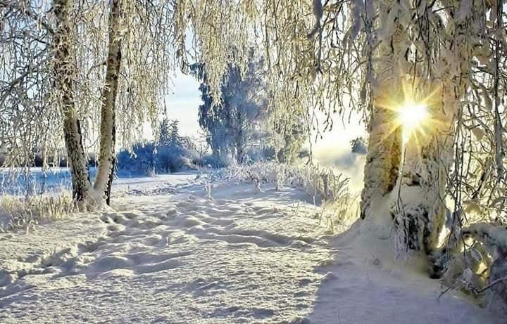 Paysage d'hiver 2.jpg