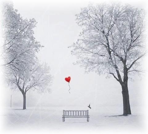 coeur en hiver.jpg