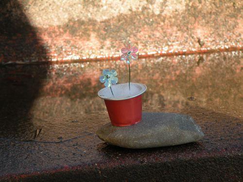 Capsule de café recyclé