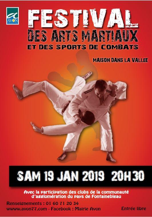 2019-01-19 Arts martiaux.JPG