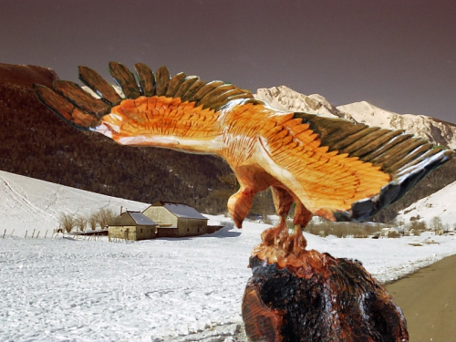 vautour 2.jpg
