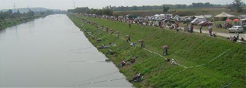 Madunice en 2005