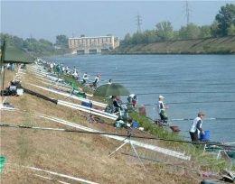 Madunice en 2003