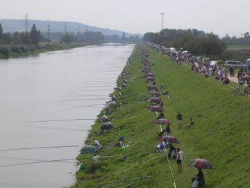 Madunice en 2005 2