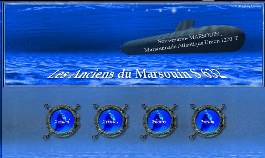 marsouin ecran.png