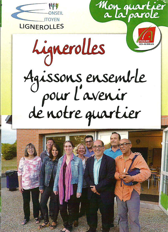 Scan Affiche Conseil Citoyen Lignerolles 2018.jpg