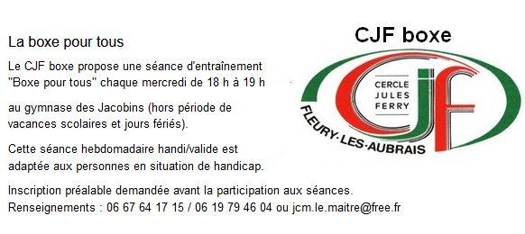 Capture CJF-Boxe pour Tous 2019..JPG