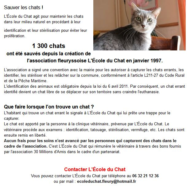 Capture Sauver les chats 2019.JPG