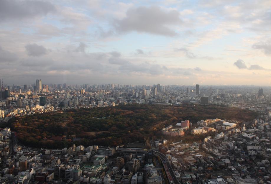 Yoyogi_Park.jpg