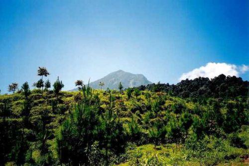 Volcan Salak, île de Java