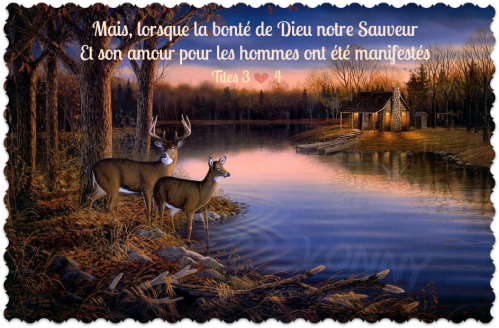 240233__sam-timm-tranquil-evening_p.png