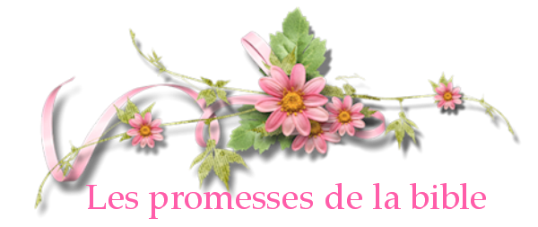 Promesses.png