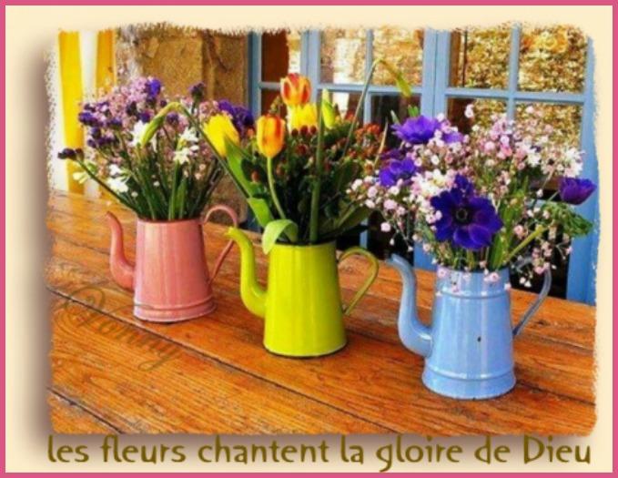 pots fleurs.jpg