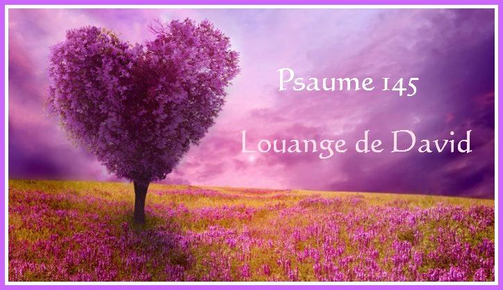 superbe-photos-nature-images-paysages-joli-paysage-violet.jpg