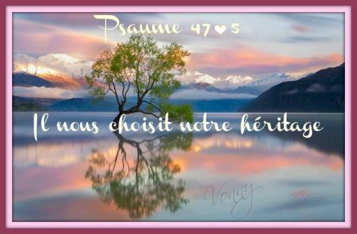 artfichier_335490_2826272_20131007454821.jpg