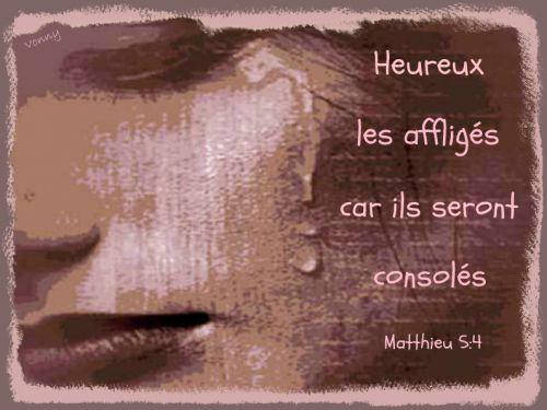 artfichier_335490_1055163_201207152005525.jpg