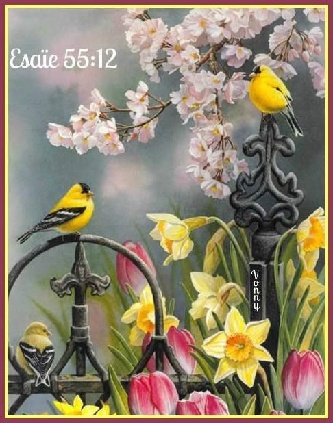 oiseaux-esaïe-fleurs.jpg