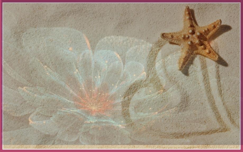 étoile-mer-ciel.jpg