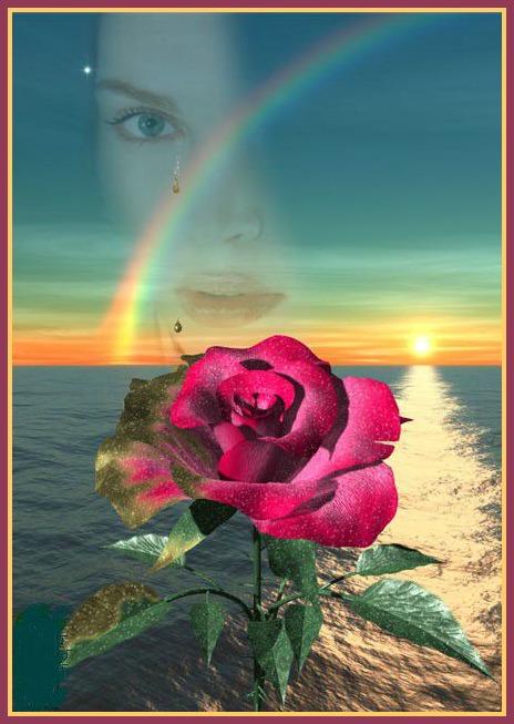 rose-mer-arc-en-ciel.jpg