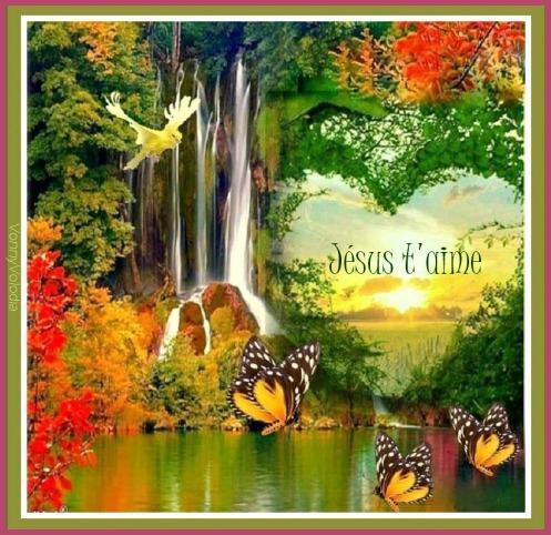 coeur-papillons-cascade.jpg