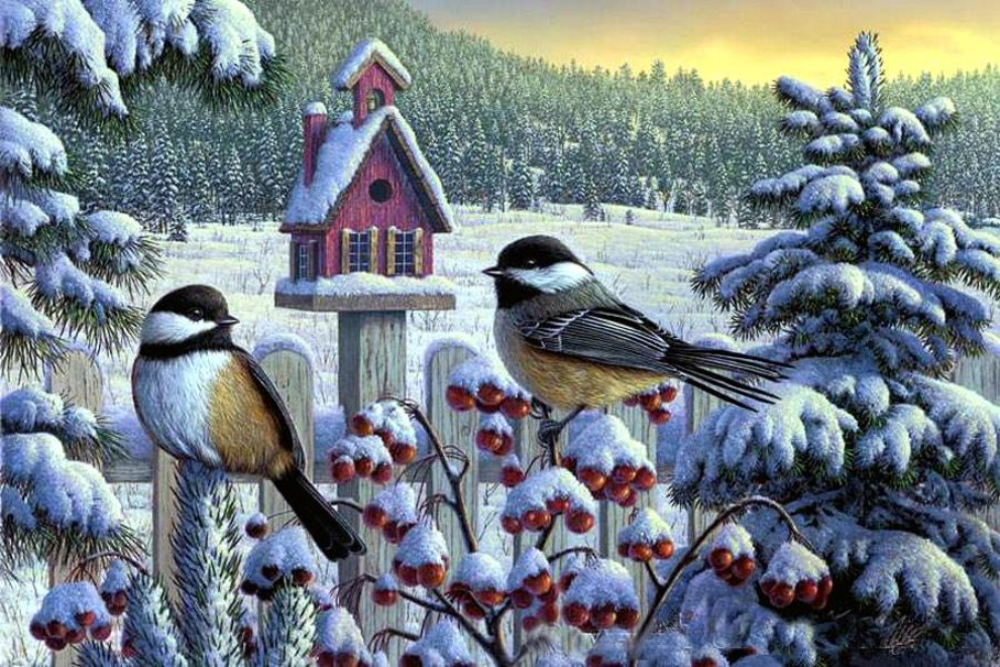 485469__kim-norlien-winter-chickadee_p.jpg
