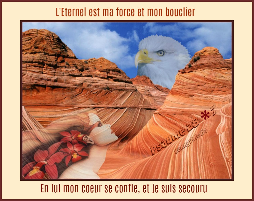 eternel-force-bouclier.jpg