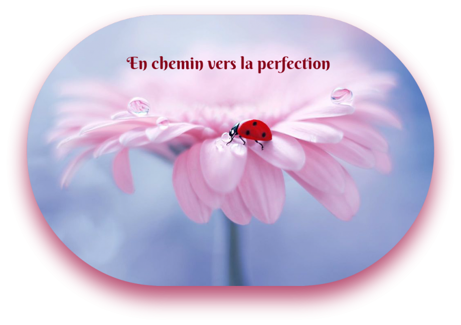 chemin-perfection.png