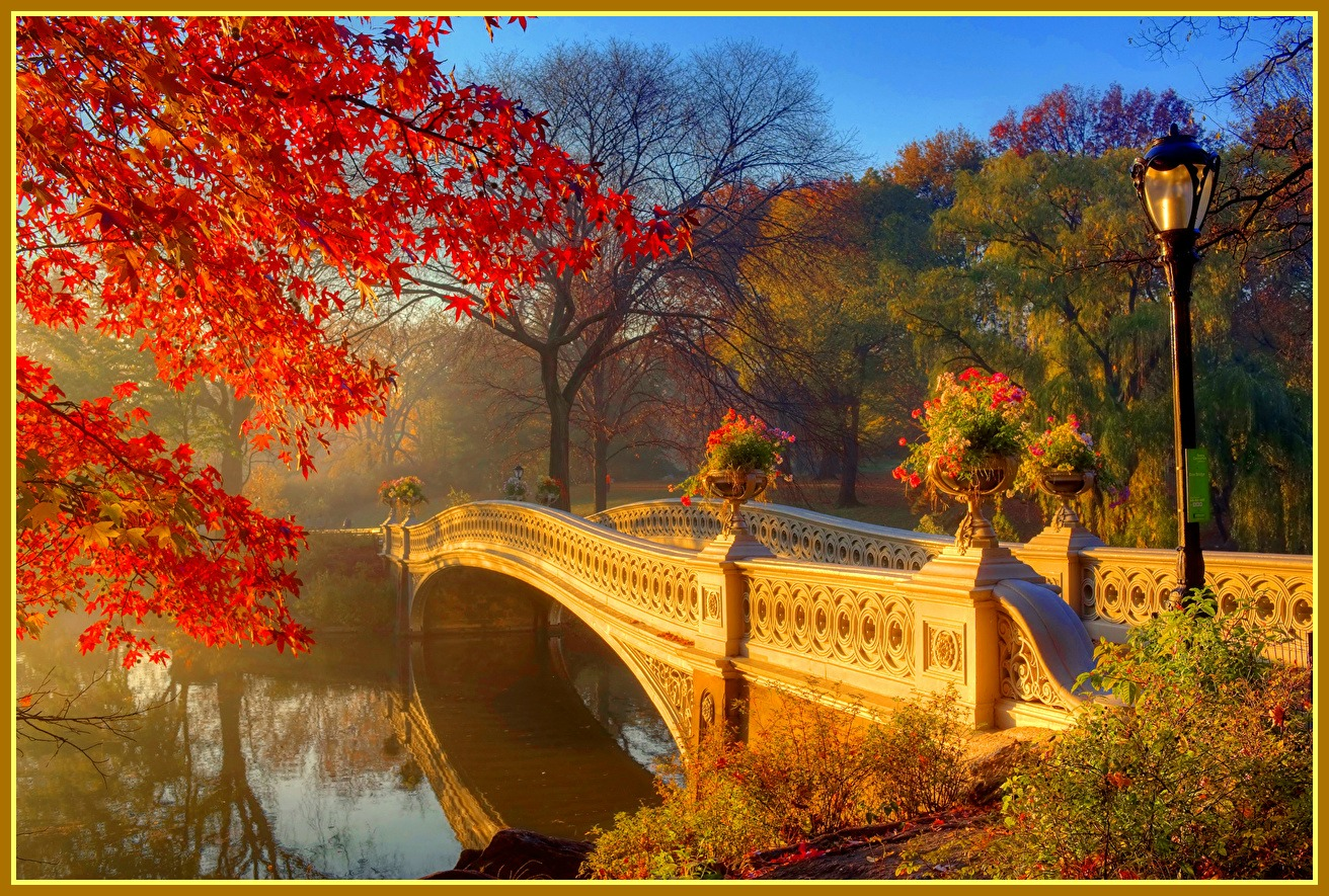 Parks_Autumn_Rivers_501276.jpg