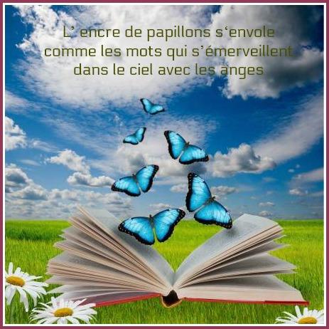14062775-libro-abierto-con-las-mariposas-volando-de-ella (2).jpg