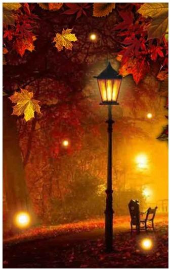 3_autumn_fireflies (2).jpg