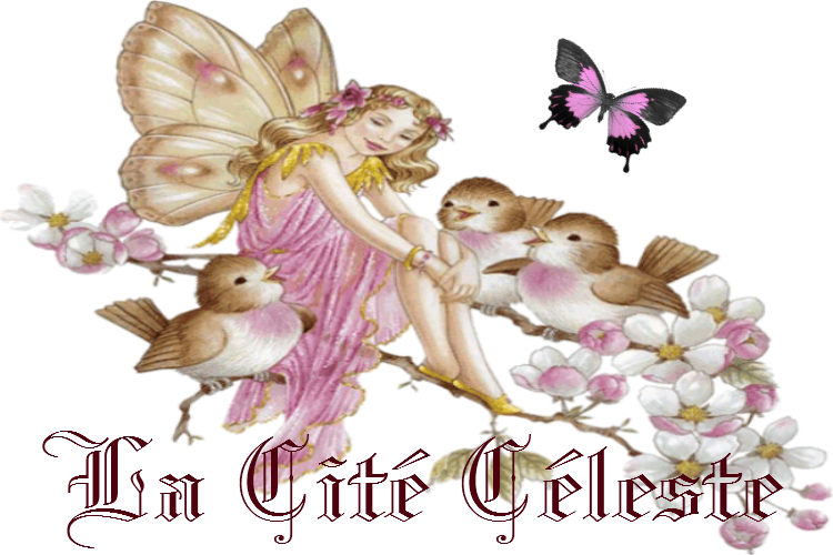 anges-oiseaux_7248957.png